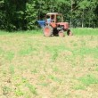Stock Video: Tractor seed sow field