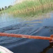 Stock Video: Oar on water