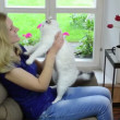 Stock Video: Cheerful girl play cat
