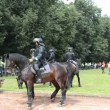 Stock Video: Police horses event