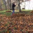 Gardener pile rake leaves — Stock Video