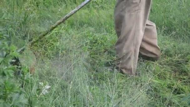 Hombre hierba cortada de panorama — Vídeo de stock