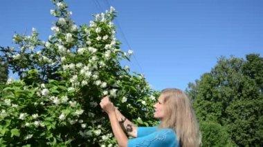 Girl pick jasmin blooms — Stock Video
