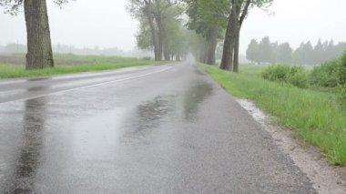 在沥青上的雨水 — 图库视频影像