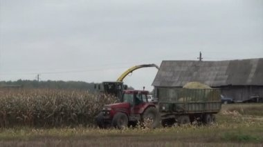 Combine harvest corn — Stock Video