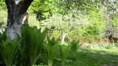 Woman work garden lawn — Stock Video