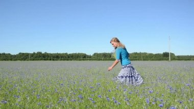 Girl pick flowers field — Vídeo de stock