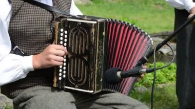 Accordionist folk music — Vídeo de stock