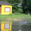 Swim pond rural man — Stock Video
