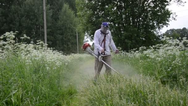 Jardinero cortar césped — Vídeo de stock