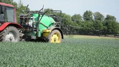 Corn field spray — Stock Video