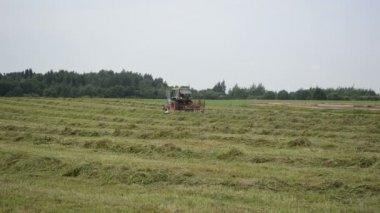 Stork tractor rake hay — Stock Video