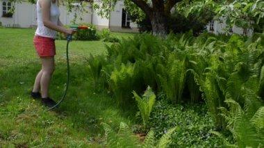 Woman water fern plant — ストックビデオ
