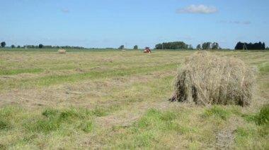 Haystack tractor work — Stockvideo