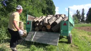 Man load log wood trailer — Stock Video