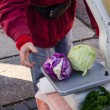 Green and purple cabbage lie on old metal scales   — 图库照片 #45660633
