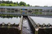Sewage treatment sedimentation. Drinkable water  — Foto Stock