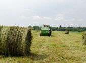 Straw bales agricultural machine gather hay  — Stock Photo