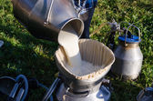 Milker pour filter fresh milk to can  — Stok fotoğraf