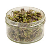 Jar of eco healing dried thyme on white background  — Foto de Stock