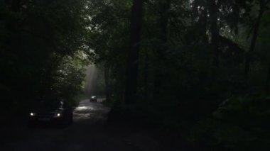 Samochód ruchu drogowego mgła — Wideo stockowe