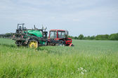 Tractor fertilizing wheat field in summer day    — Stock Photo