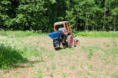 Farmer sow buckwheat seeds in field with tractor  — Stock Photo