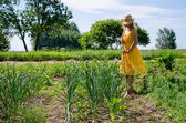 Barefoot gardener woman work in garden  — Stock Photo