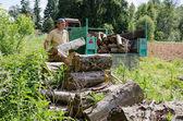伐木人加载树日志在拖拉机拖车 — 图库照片