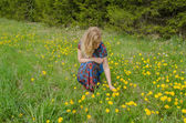 Woman on the meadow enjoy nature with sowthistle  — Stock Photo
