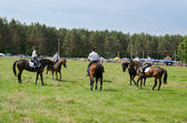 Mounted police horse riders performance show  — Stock Photo
