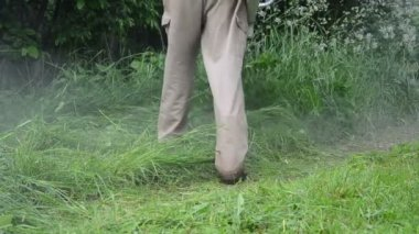 Water drop wet grass cut — Stock Video