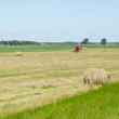 Dry haystack roll and blur tractor ted hay field — Stock Photo #47835733