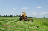 Tractor make sharp turn and leaves cut grass tufts  — Stock Photo