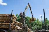 Forest worker loading log with crane in trailer   — Stock fotografie
