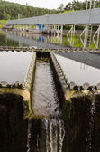 Sewage treatment sedimentation. Drinkable water  — Stock Photo