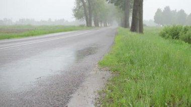 Rain water on asphalt — Stock Video