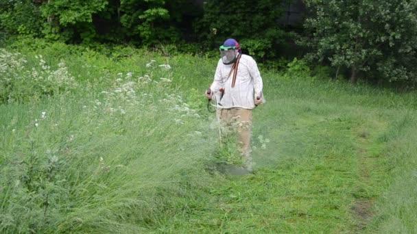 Granjero trabajador hombre recorte siega alta hierba mojada después de la lluvia — Vídeo de stock