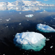 Stock Photo: Antarctica and ice floes