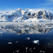 Ice floes in antarctica — 图库照片