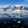 Ice floes in antarctica — Stockfoto
