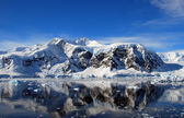 Reflecties in antarctica — Stockfoto