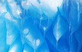 Blue icycles — Stock Photo