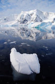 Iceberg in antarctica — Stock Photo