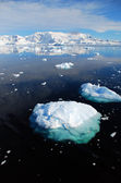 Antarctica en ice floes — Stockfoto