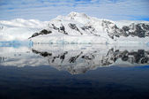 Ice floe in antarctica — Stock Photo