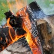 Camp fire background — Stock Photo