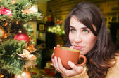 Young woman relaxing at home. Christmas time. Beautiful girl drinking tea at home. — Stock Photo