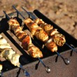 Chicken grill — Stock Photo #46538155