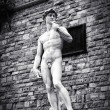 Stock Photo: Michelangelo's David